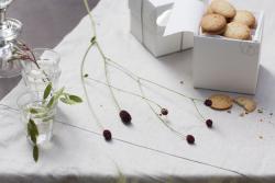 Boite Fleurs Thierry Boutemy Biscuit Croque Maison Dandoy