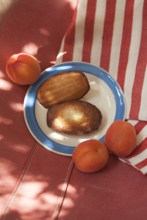 Two madeleines in a plate surrounded by three apricots.