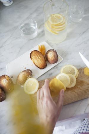 Madeleines Rondelles Citron Maison Dandoy