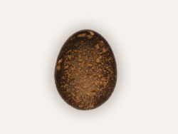The Dandoy Egg Dark Chocolate Maison Dandoy